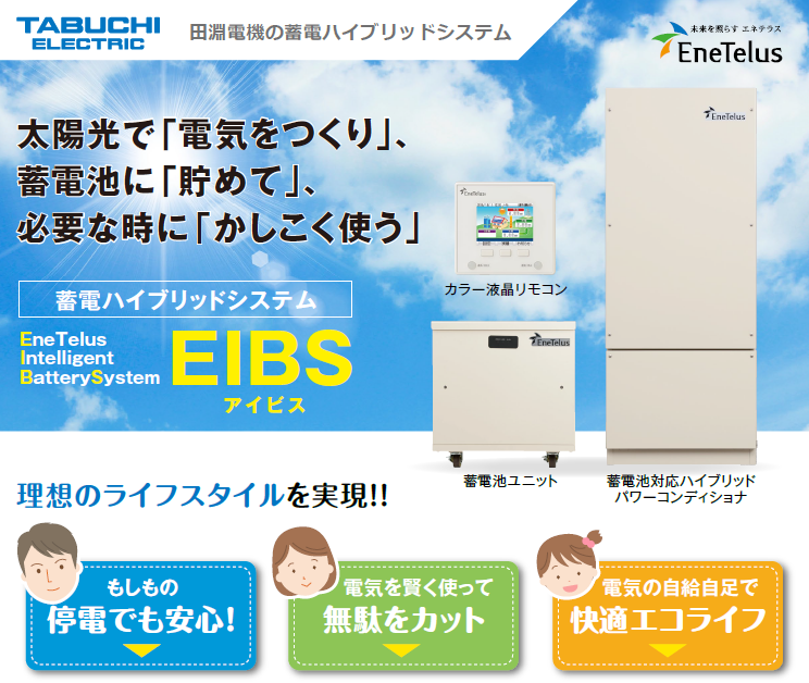 EIBS_webpage.png